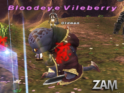 Bloodeye Vileberry Picture