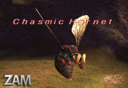Chasmic Hornet Picture