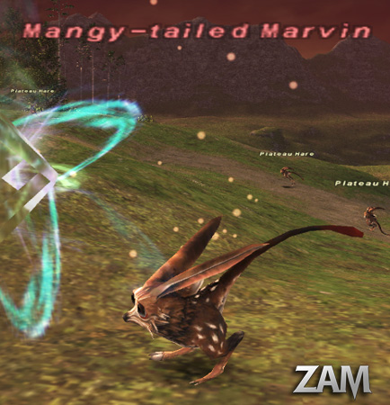 Mangy-tailed Marvin Picture