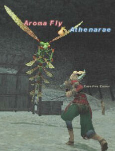 Aroma Fly Picture