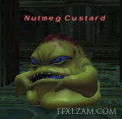 Nutmeg Custard Picture