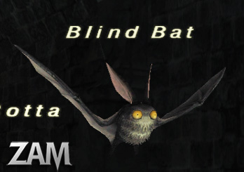 Blind Bat Picture