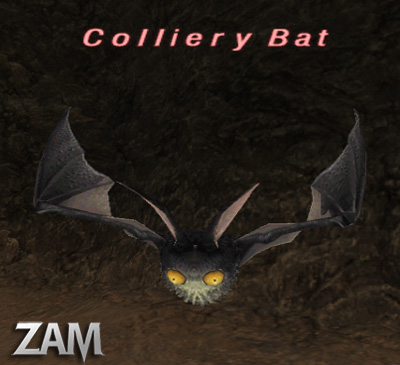Colliery Bat Picture
