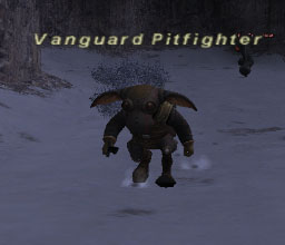 Vanguard Pitfighter Picture