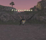 Fledermaus Picture