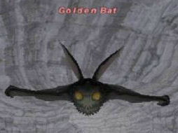 Golden Bat Picture