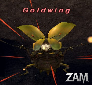 Goldwing Picture