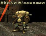 Moblin Wisewoman Picture