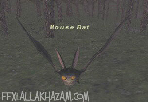 Mouse Bat Picture