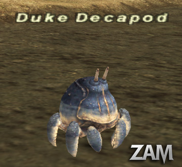 Duke Decapod Picture