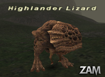 Highlander Lizard Picture