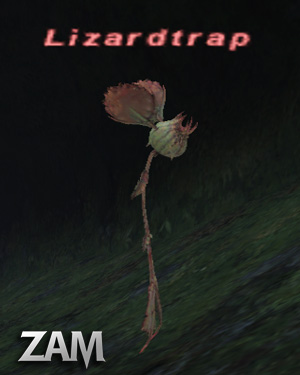 Lizardtrap Picture