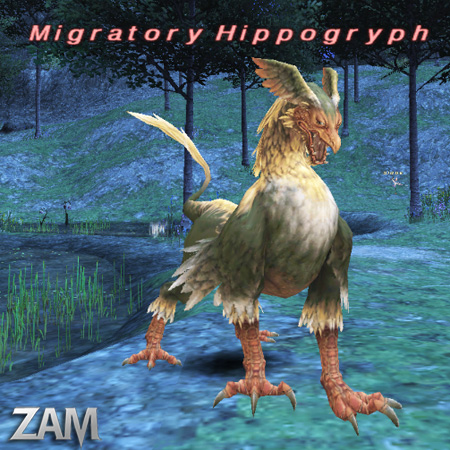 Migratory Hippogryph Picture