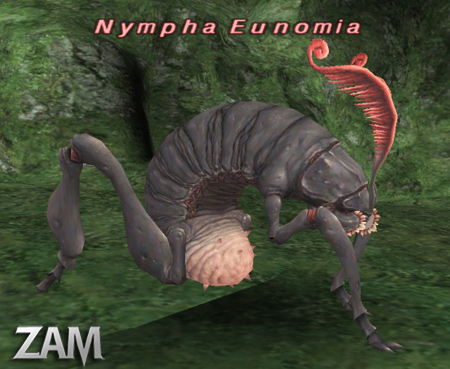 Nympha Eunomia Picture