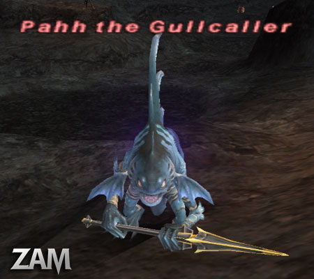 Pahh the Gullcaller Picture