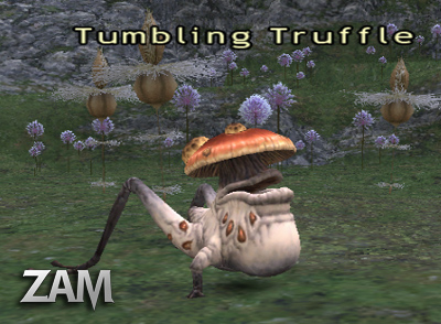 Tumbling Truffle Picture