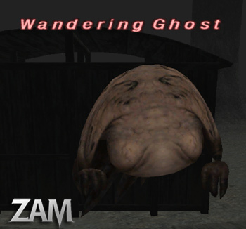 Wandering Ghost Picture
