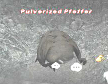 Pulverized Pfeffer Picture