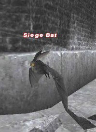 Siege Bat Picture