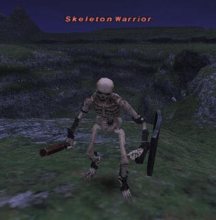 Skeleton Warrior Picture