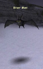 Star Bat Picture
