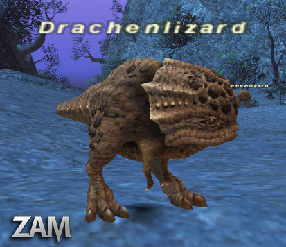 Drachenlizard Picture