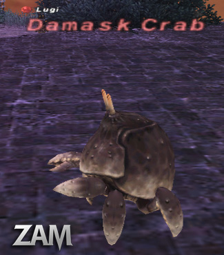 Damask Crab Picture