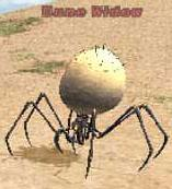 Dune Widow Picture