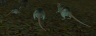 3 diseased rats