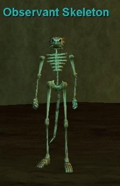 observant skeleton :: bestiary :: everquest :: zam, Skeleton