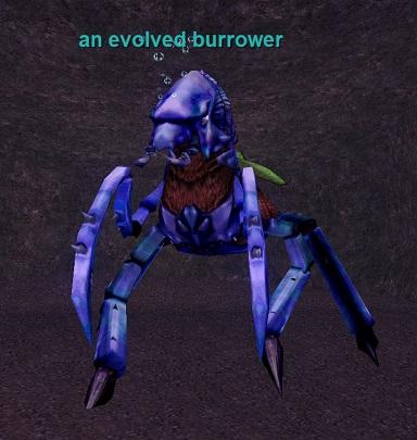 an evolved burrower :: Bestiary :: EverQuest :: ZAM