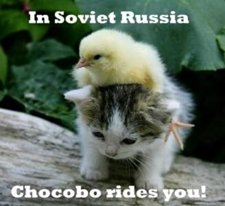 Chocobo rides you!