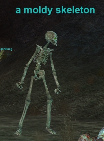 a moldy skeleton :: bestiary :: everquest :: zam, Skeleton