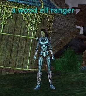 a wood elf ranger :: EverQuest :: ZAM