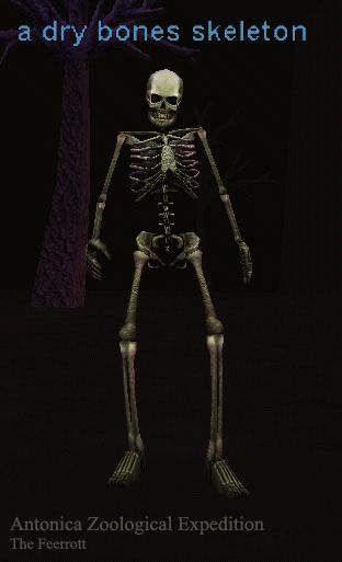 a dry bones skeleton :: bestiary :: everquest :: zam, Skeleton