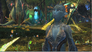 Growing the Sylvari