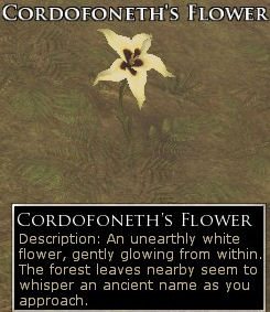 Cordofoneth's Flower Screenshot