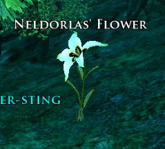 Neldorlas' Flower Screenshot